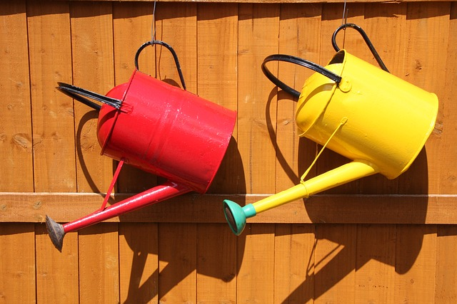watering-can-848223_640
