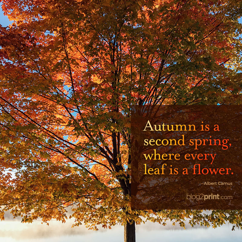 Autumn is a second spring, where every leaf is a flower.